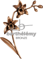 Orchidée Bronze